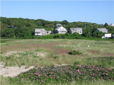 Menemsha (Chilmark) Martha's Vineyard vacation rental - View of our property from the beach