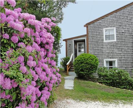Oak Bluffs, Lagoon Pond Martha's Vineyard vacation rental - Relax in this waterfront home with breathtaking views
