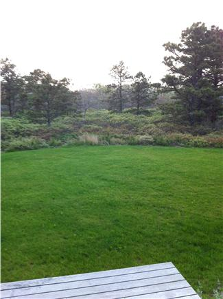 West Tisbury Martha's Vineyard vacation rental - Extra space for kids- Beautiful Grassy yard both front and back