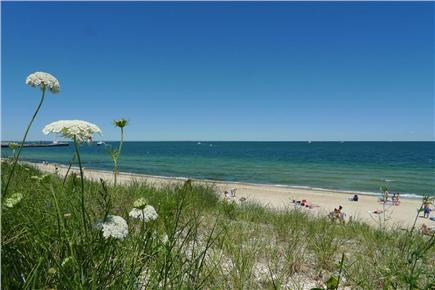 Oak Bluffs Martha's Vineyard vacation rental - Beautiful Town beach just a block away
