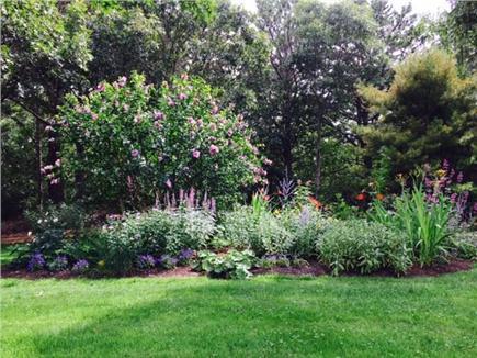 Chilmark Martha's Vineyard vacation rental - Gardens bloom throughout the summer