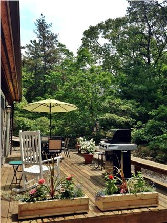 Edgartown, Dodger's Hole Martha's Vineyard vacation rental - Back deck and BBQ grill