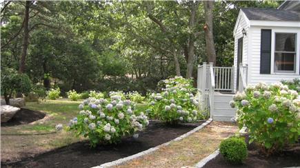 Edgartown Martha's Vineyard vacation rental - View from driveway