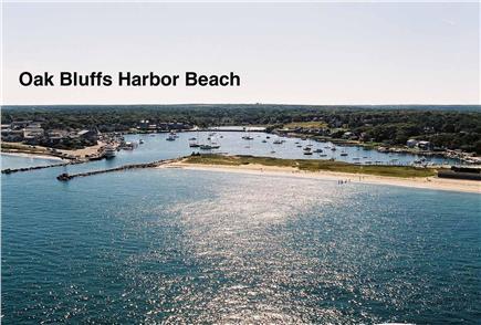 Oak Bluffs Martha's Vineyard vacation rental - Oak Bluffs Harbor 1/2 mile