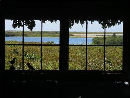 West Tisbury Martha's Vineyard vacation rental - Living room window looking south