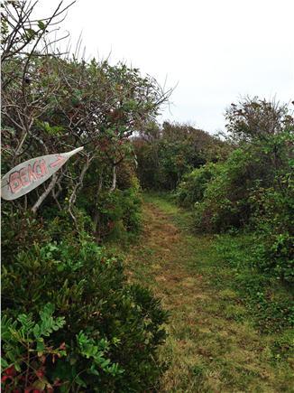 Chilmark - Lucy Vincent Beach Martha's Vineyard vacation rental - Path to beach