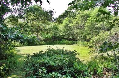 Chilmark Martha's Vineyard vacation rental - Meadow amidst five acres of wooded paths