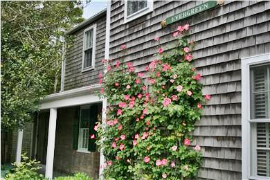 Nantucket Town Lily Street Nantucket vacation rental - Roses in Bloom on Lily Street